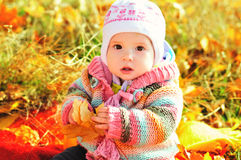 https://www.dreamstime.com/stock-photography-baby-fall-time-sitting-leaf-image35955872
